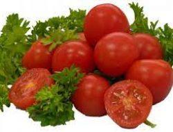 Bioplastik, Ford Mencoba Tomat Menjadi Plastik